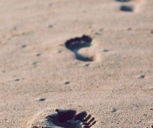 mindful walk mindful wandeling